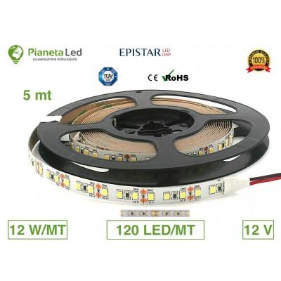 5 METRI STRISCIA 600 LED...